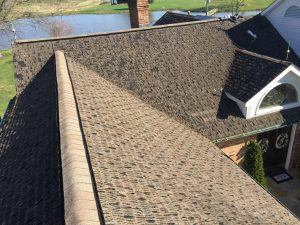 """""""40 year"""" asphalt shingle at about 15 years."""